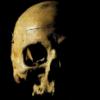 _Skull_